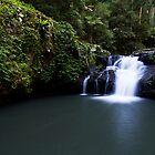 """Wongaree Falls"" ∞ Lamington National Park, QLD - Australia by Jason Asher"