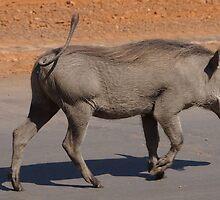 Botswana Radio  by SheryleMoon