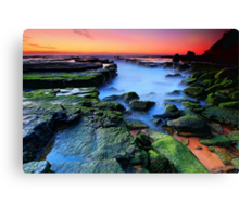 Mossy Rocks Canvas Print