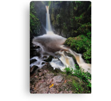 Stanley Ghyll Force Canvas Print