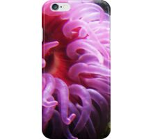 Anemones iPhone Case/Skin