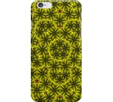 2015-11-17-007  iPhone Case/Skin
