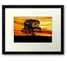 Lone Tree Framed Print
