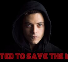 Mr Robot- I wanted to save the world by ivanscrubs