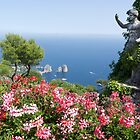 Capri by Robert Taylor