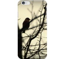 Bird in a Thorny Tree iPhone Case/Skin