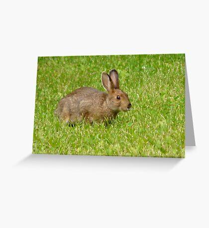 Pretty Brown Hop-Bunny Greeting Card