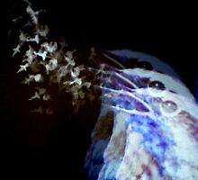 Bird dream by Janet GATHIER-COOMBER