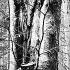 Treely Good by fraser68