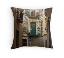 Go Right at the Green Door Throw Pillow