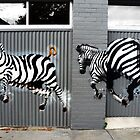 Zebras graffiti, Collingwood by Roz McQuillan
