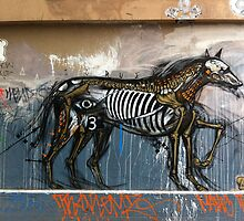 Graffiti, Hosier Lane, Melbourne by Roz McQuillan