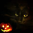Halloween Suzie by vic321