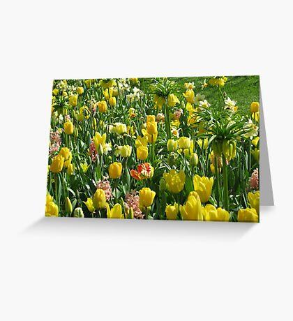 Golden Giants - Keukenhof Crown Imperials Greeting Card
