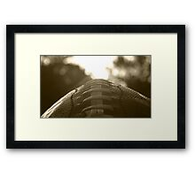 For The Love of The Game Framed Print
