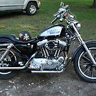 1994 Harley Davidson by Tom Broderick IPA