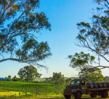 Bullock Creek Vineyard - Bendigo, Victoria Sticker