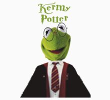 Kermy Potter by rachick123