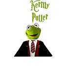 Kermy Potter iphone case by rachick123