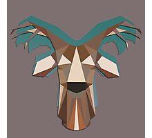 Geometric Winter Deer Photographic Print
