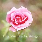 It's the Little Things by Franchesca Cox