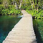 Wooden Pathway in Plitvice Lakes by kirilart