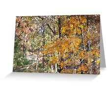 golden hickory in woodland path Greeting Card