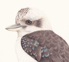 Kookaburra by Cat Gabriel