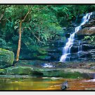 Upper Somersby Falls, Somersby NSW by Chris Munn