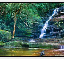 Upper Somersby Falls, Somersby NSW by Chris Munn