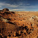 Southern Utah Desertscape by Robert Mullner