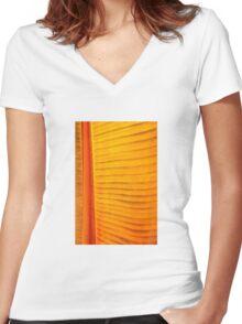 In the Bronze Morning Light  Women's Fitted V-Neck T-Shirt