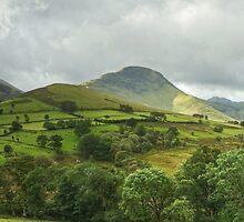 Newlands Skyline by Jamie  Green