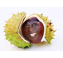 Artist's Impression of the Young Ainsley as a Newly Fallen Conker Photographic Print