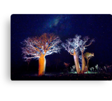 The Boab Garden at Midnight Canvas Print