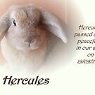 Goodbye Hercules xox by Michaela1991