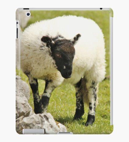 Yorkshire Lamb iPad Case/Skin