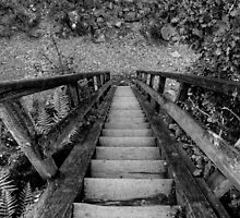 The Stairway by EvilTwin