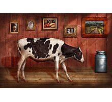 Animal - The Cow Photographic Print