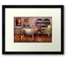 Animal - The Pony Framed Print