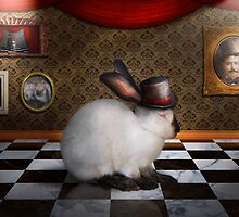 Animal - The Rabbit by Mike  Savad
