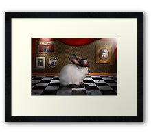 Animal - The Rabbit Framed Print
