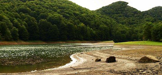 Leurtza Reservoir (1) by photoshot44