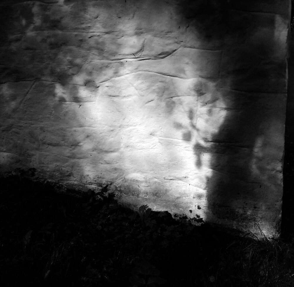 Wind writing on the weavers wall by ragman