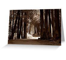 Mackinac Island Path Greeting Card
