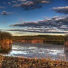 Beauty of the Slough by Aaron Campbell