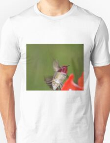 I cannot doubt the hand of God the Creator in the design of the remarkable hummingbirds. Truly they are 'God's tiny miracle.' T-Shirt