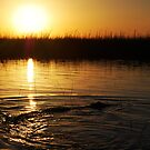 Sunset in the Everglades by Sweetpea06