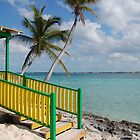 Beach in the Bahamas by Sweetpea06