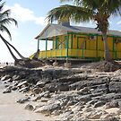 Hut on the beach in the Bahamas by Sweetpea06